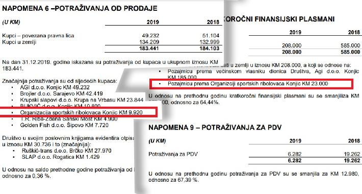 """Izvještaj revizorske kuće """"Revizija Auditing"""" Mostar o izvršenoj reviziji finansijskih izvještaja za 2019. godinu"""